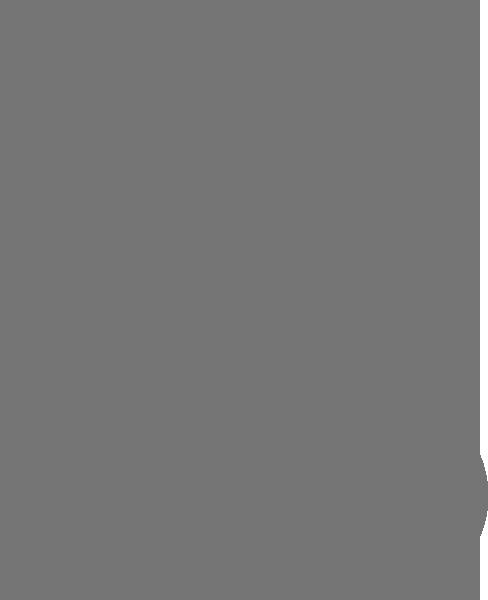 light checklist icon