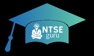 Ntseguru Logo