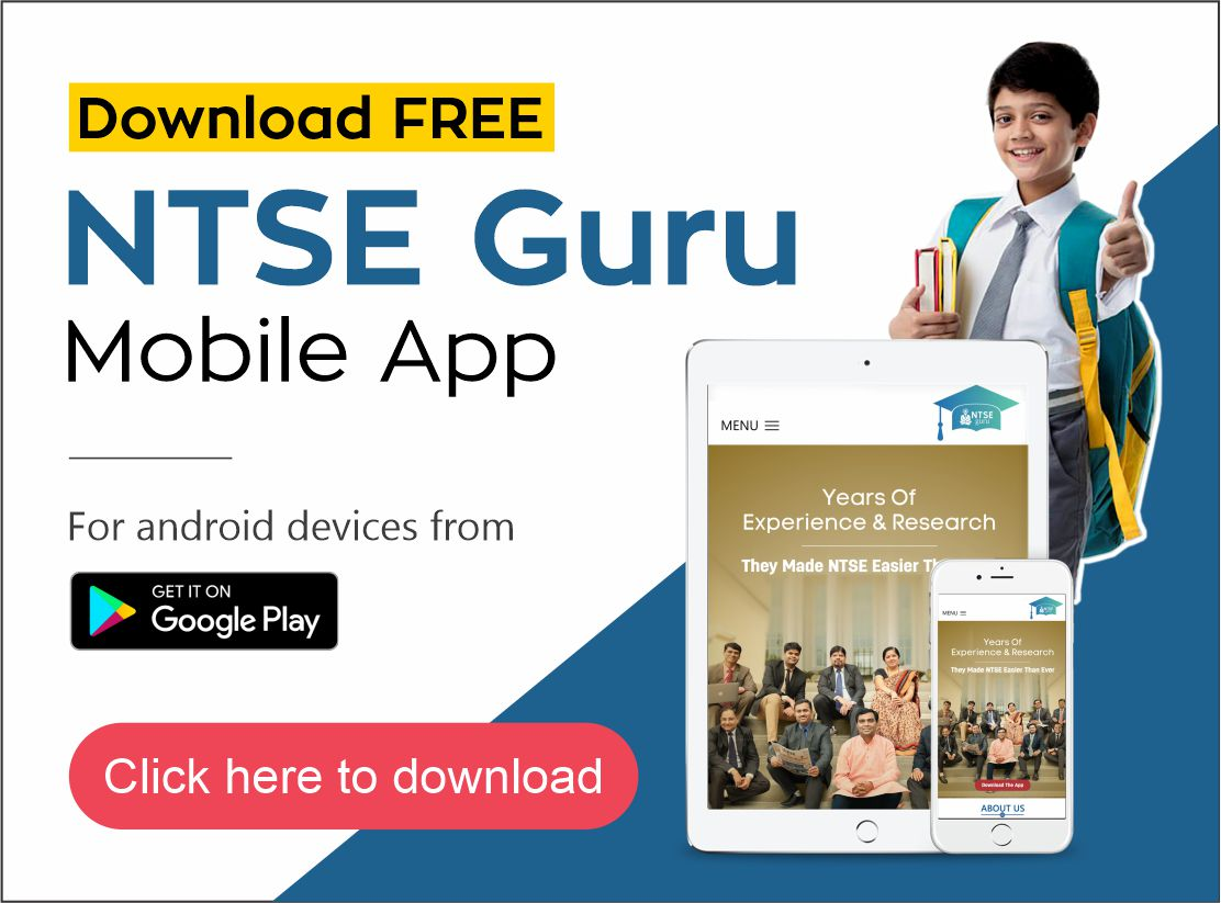 Download the ntseguru mobile app